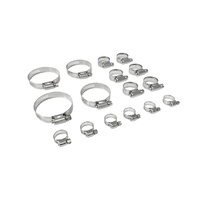 1964 - 1973 Mustang V8 Stainless Steel FoMoCo Hose Clamp Kit