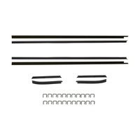 1971 - 1973 Mustang Coupe Window Channel Strip Set - Authentic