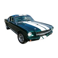 1964 - 1968 Mustang Lemans Stripe Kit - White